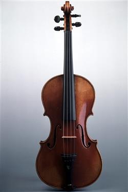 Violon | Paul Kaul