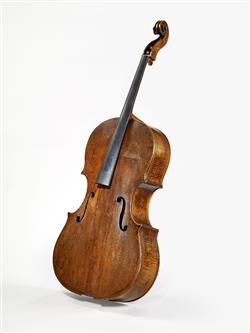 Basse de violon, recoupée en violoncelle | Amati, Andrea