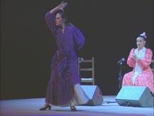 Flamenco à la cité. Lauréats du concours de flamenco de Nîmes | Natalia del Palacio