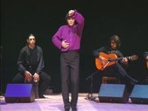 Flamenco à la cité. Soirée Canales - La Tani | Antonio Canales