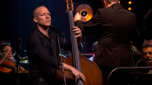 Concert vidéo An evening with Avishai Cohen, Avishai Cohen symphonique